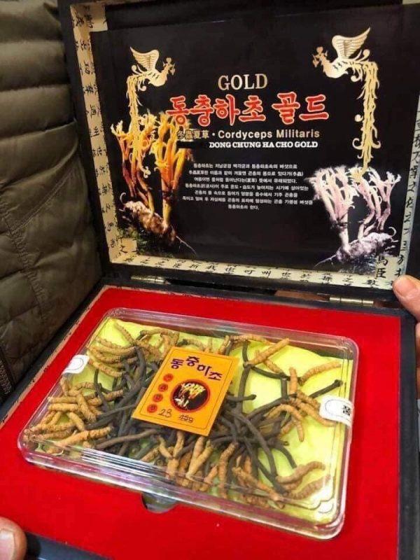 ng trùng hạ thảo Hàn Quốc chất lượng min